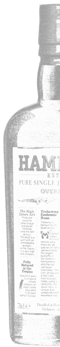 bottle hampden estate rum litography